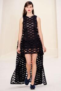 dior-spring-2014-couture-2.nocrop.w1800.h1330.2x